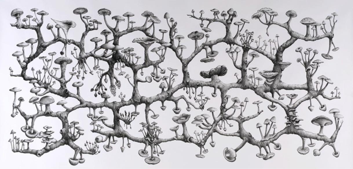 mycelium1.png