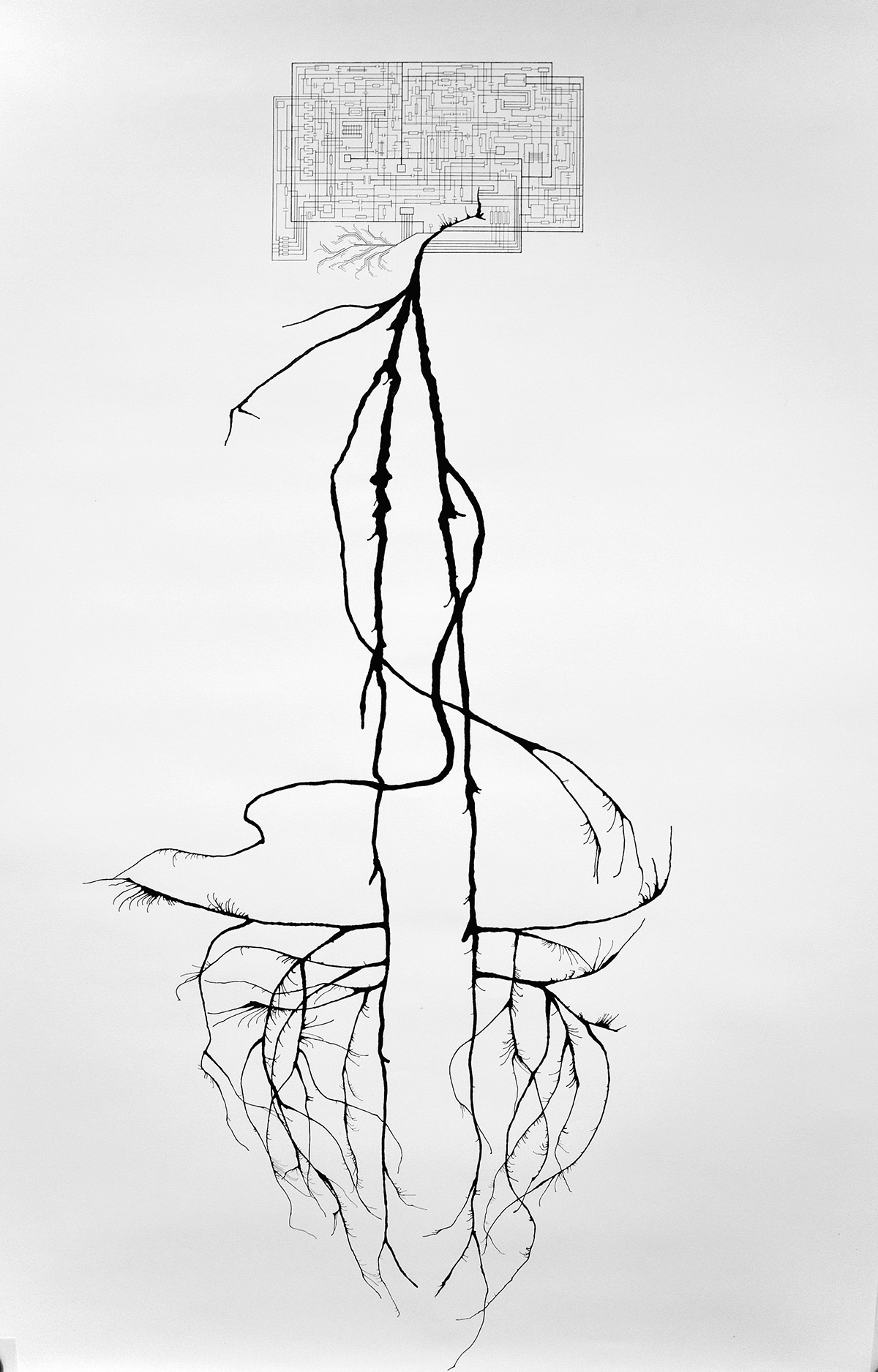 "Maggie Connolly, ""Untitled (Lateral View)""; Ink, Pen, and Blood; 110 x 77cm (2016)"