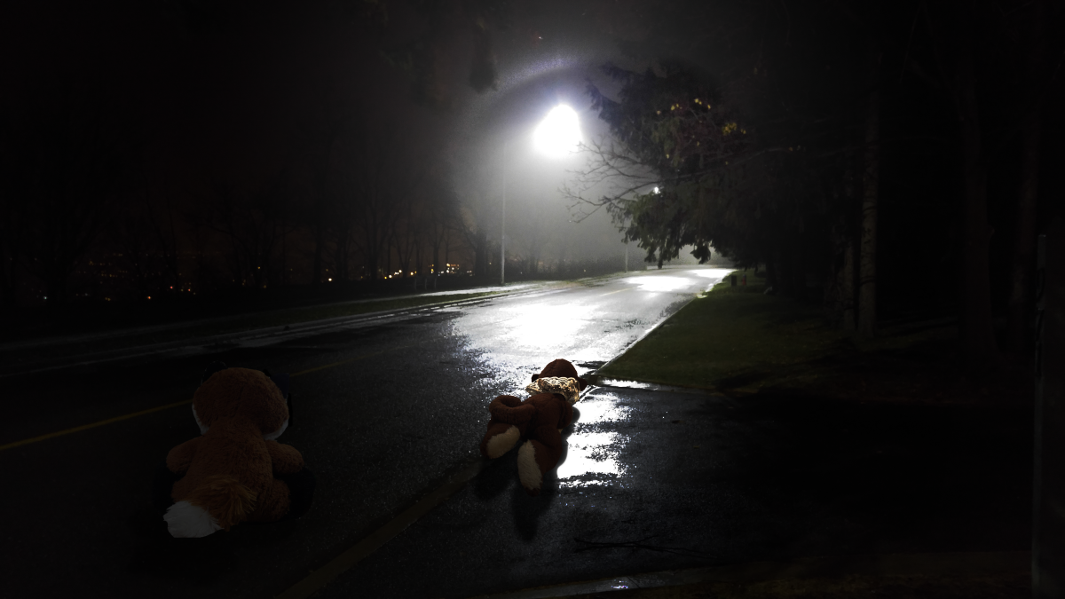 Title:  Hunting  About:  Two of the stuffed animals head out to catch more humans.
