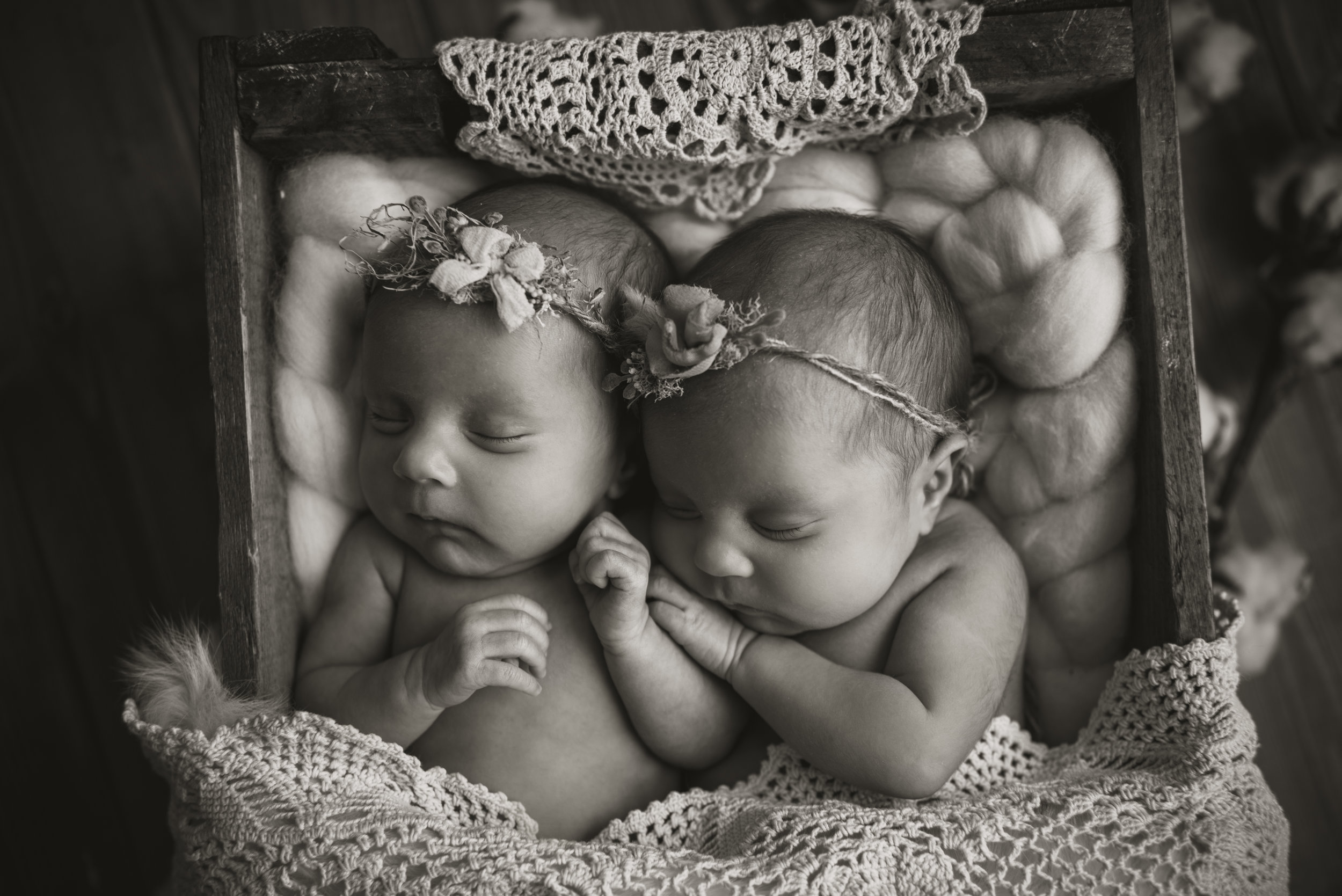 Laura Olson Photography - Nievelina - Newborns - Nova and Luna - December 2016-1483-2.jpg