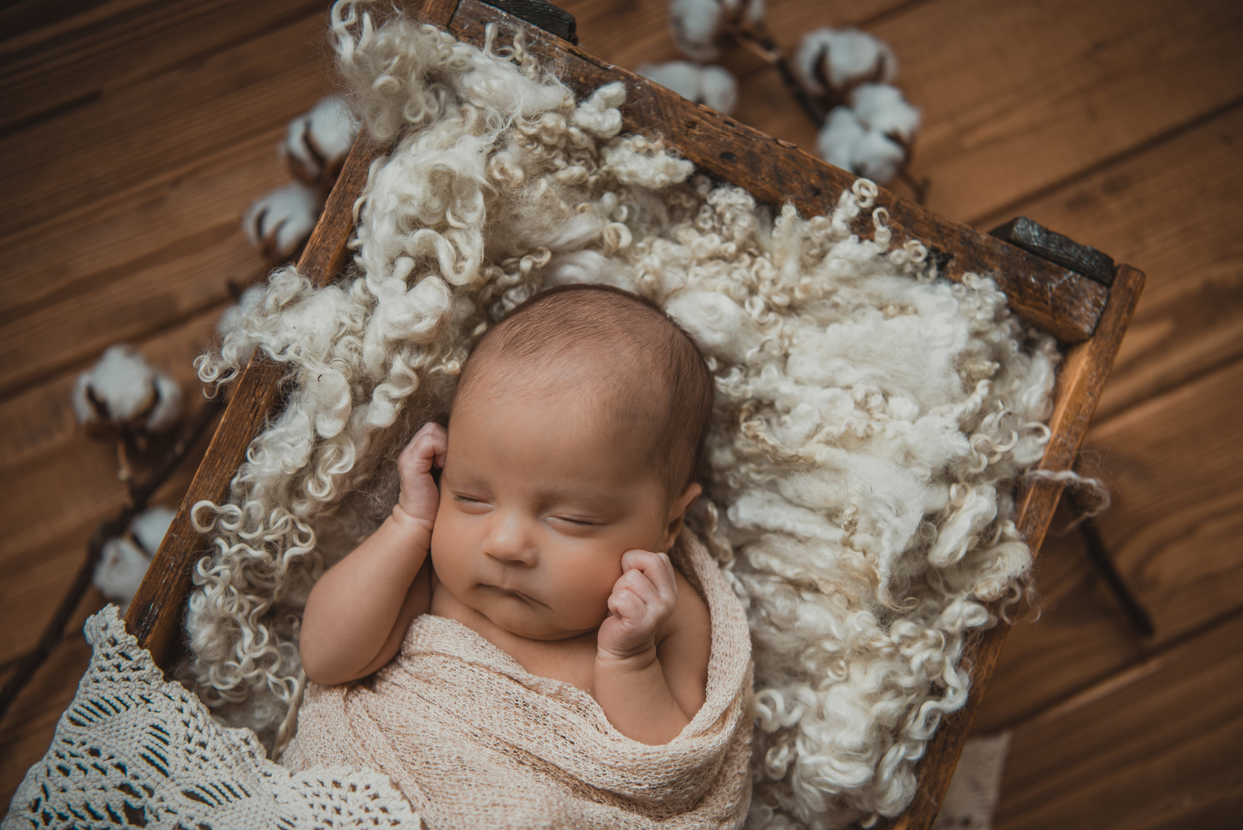 Laura Olson Photography - Nievelina - Newborns - Nova and Luna - December 2016-1525-2.jpg