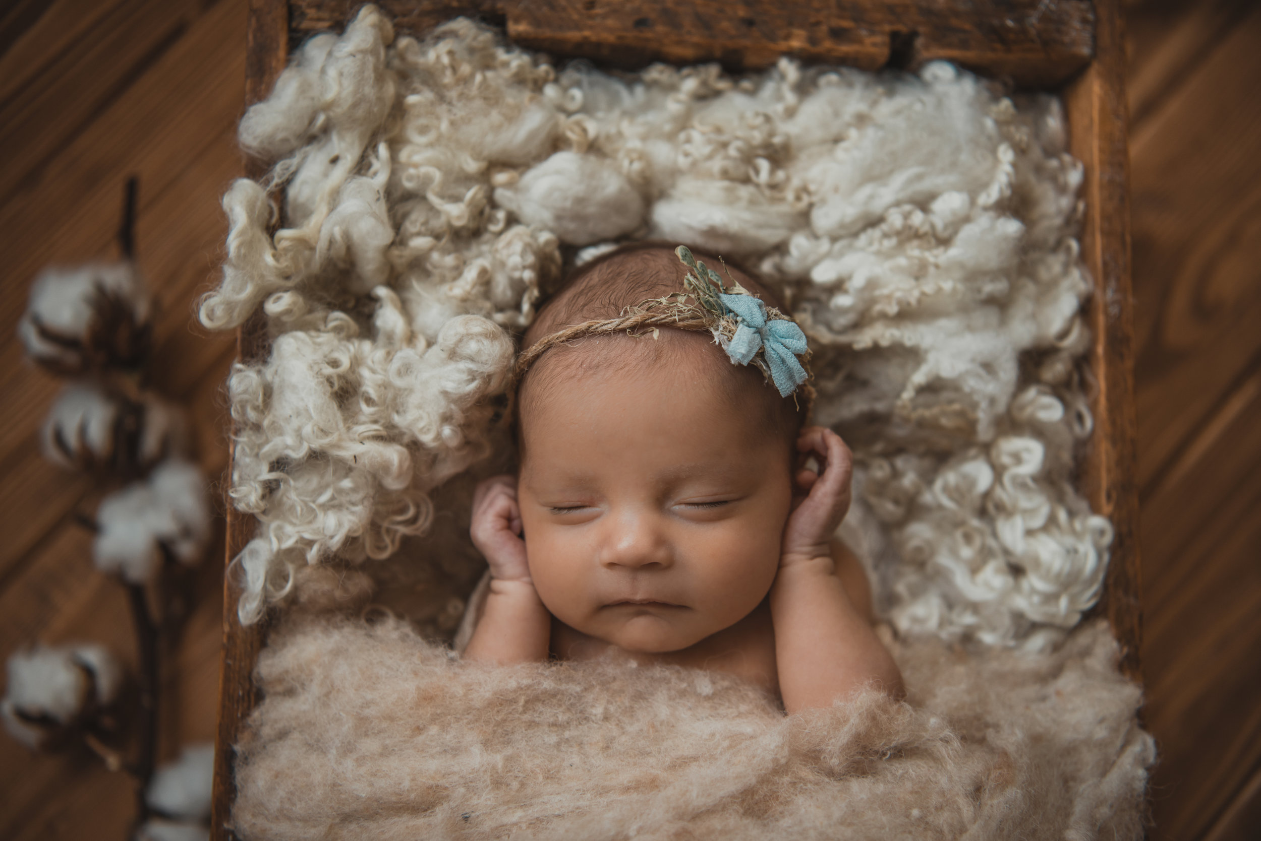 Laura Olson Photography - Nievelina - Newborns - Nova and Luna - December 2016-1540-2.jpg