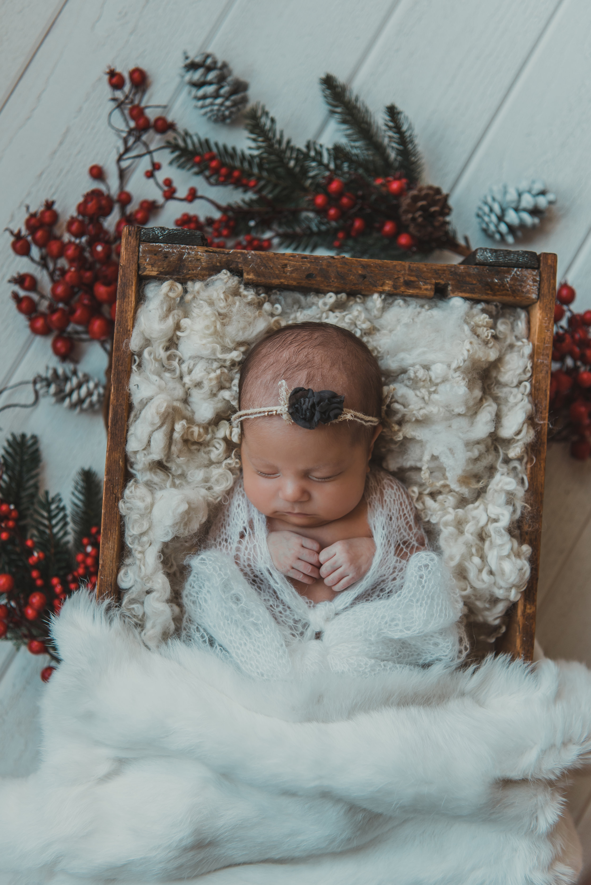 Laura Olson Photography - Nievelina - Newborns - Nova and Luna - December 2016-1614.jpg