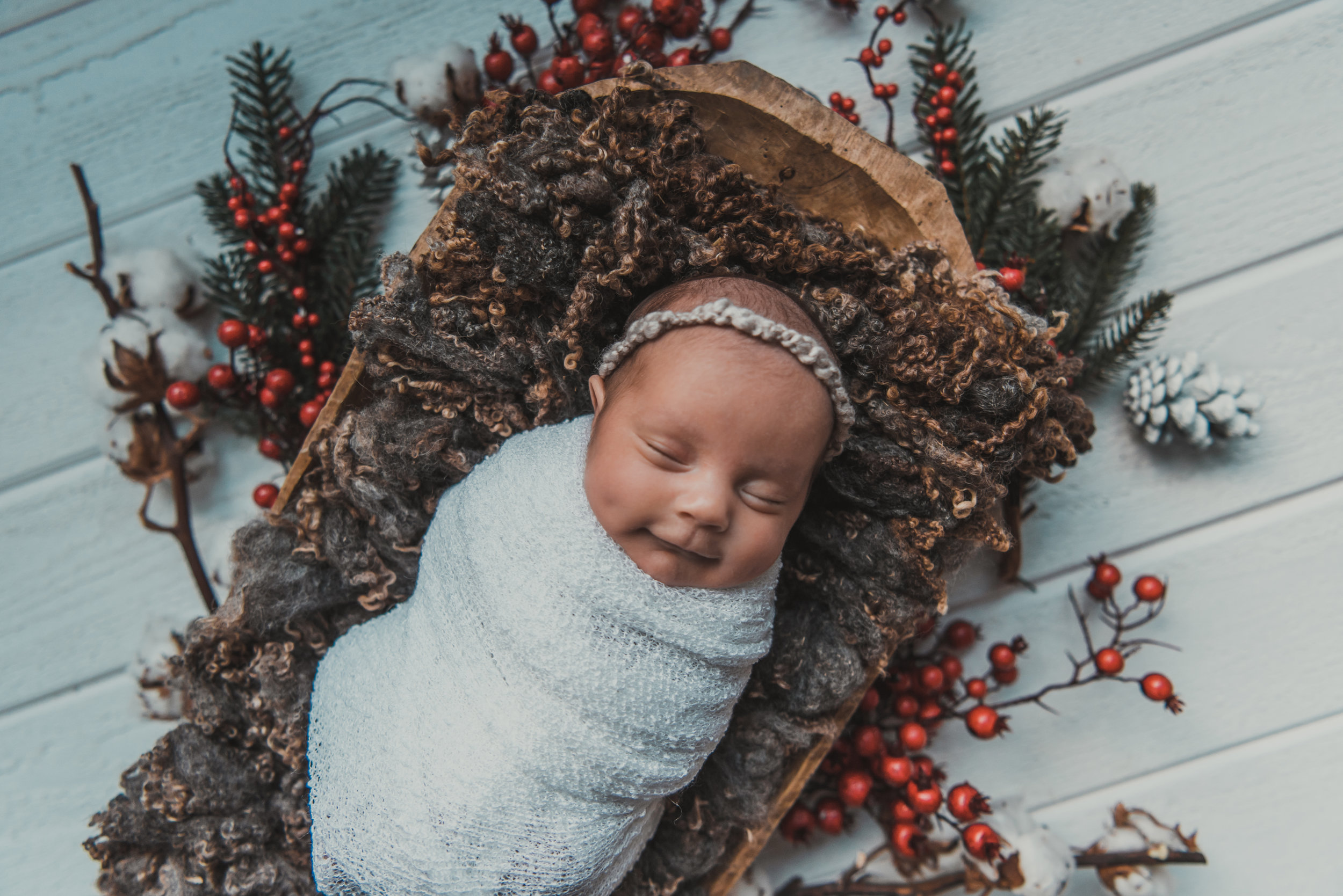 Laura Olson Photography - Nievelina - Newborns - Nova and Luna - December 2016-1644-2.jpg