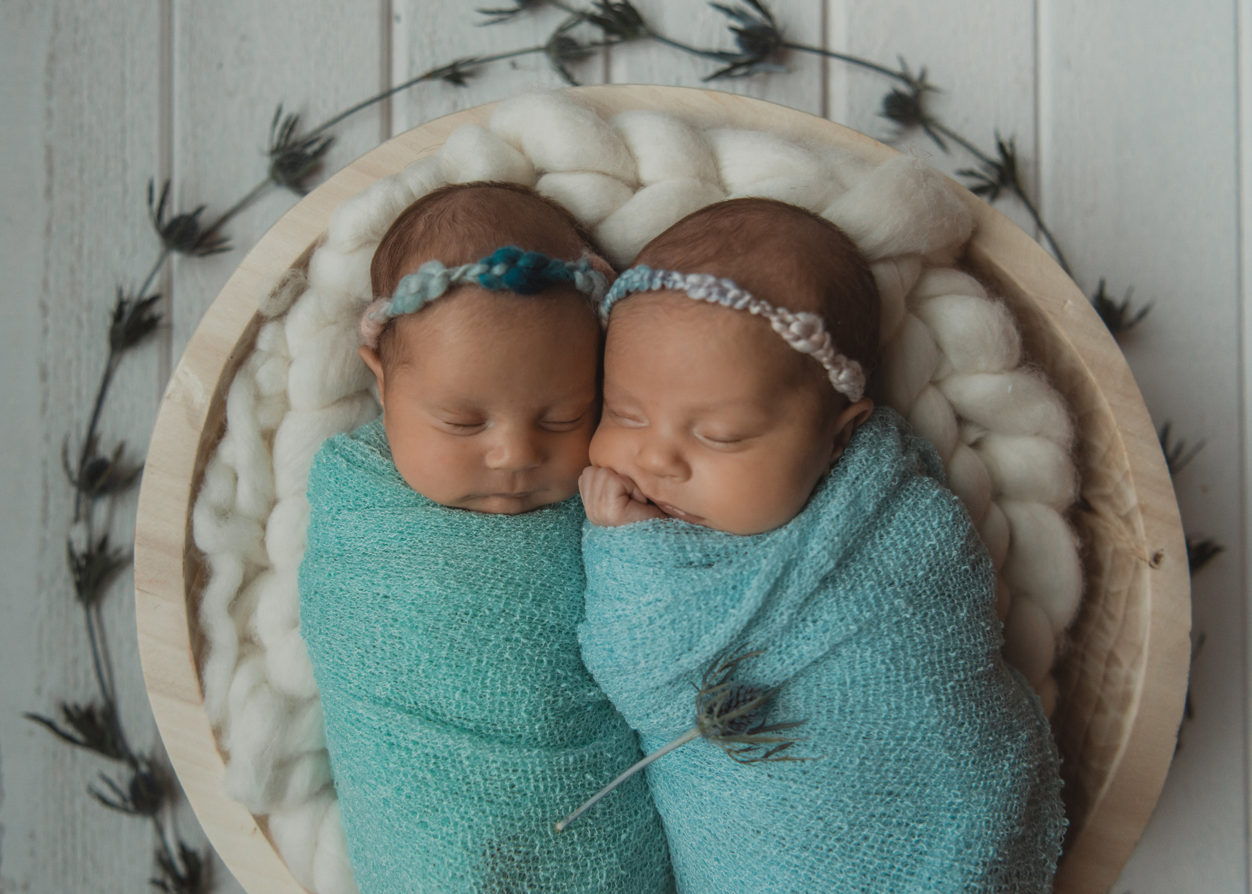Laura Olson Photography - Nievelina - Newborns - Nova and Luna - December 2016-1664-2.jpg