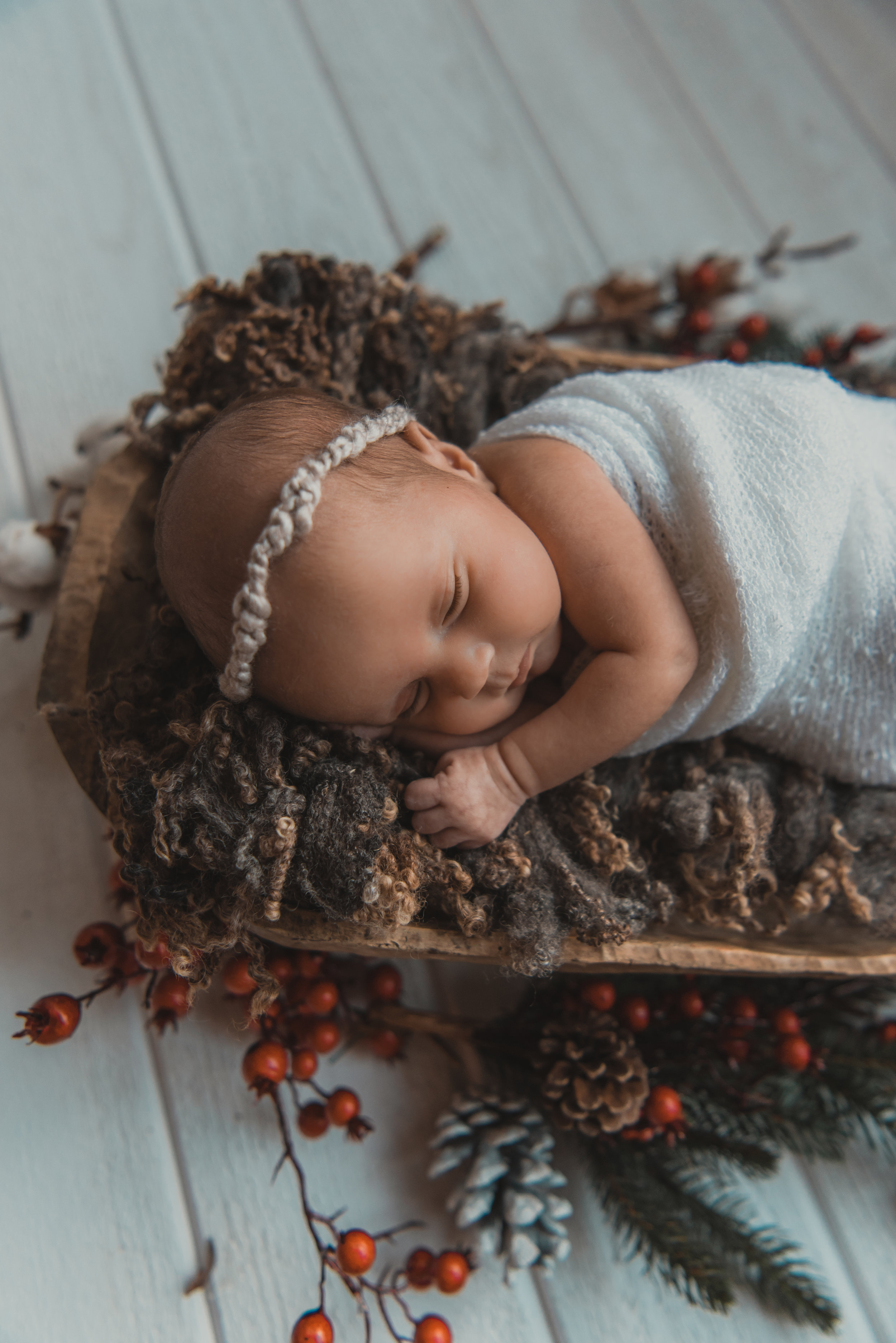 Laura Olson Photography - Nievelina - Newborns - Nova and Luna - December 2016-1661-2.jpg