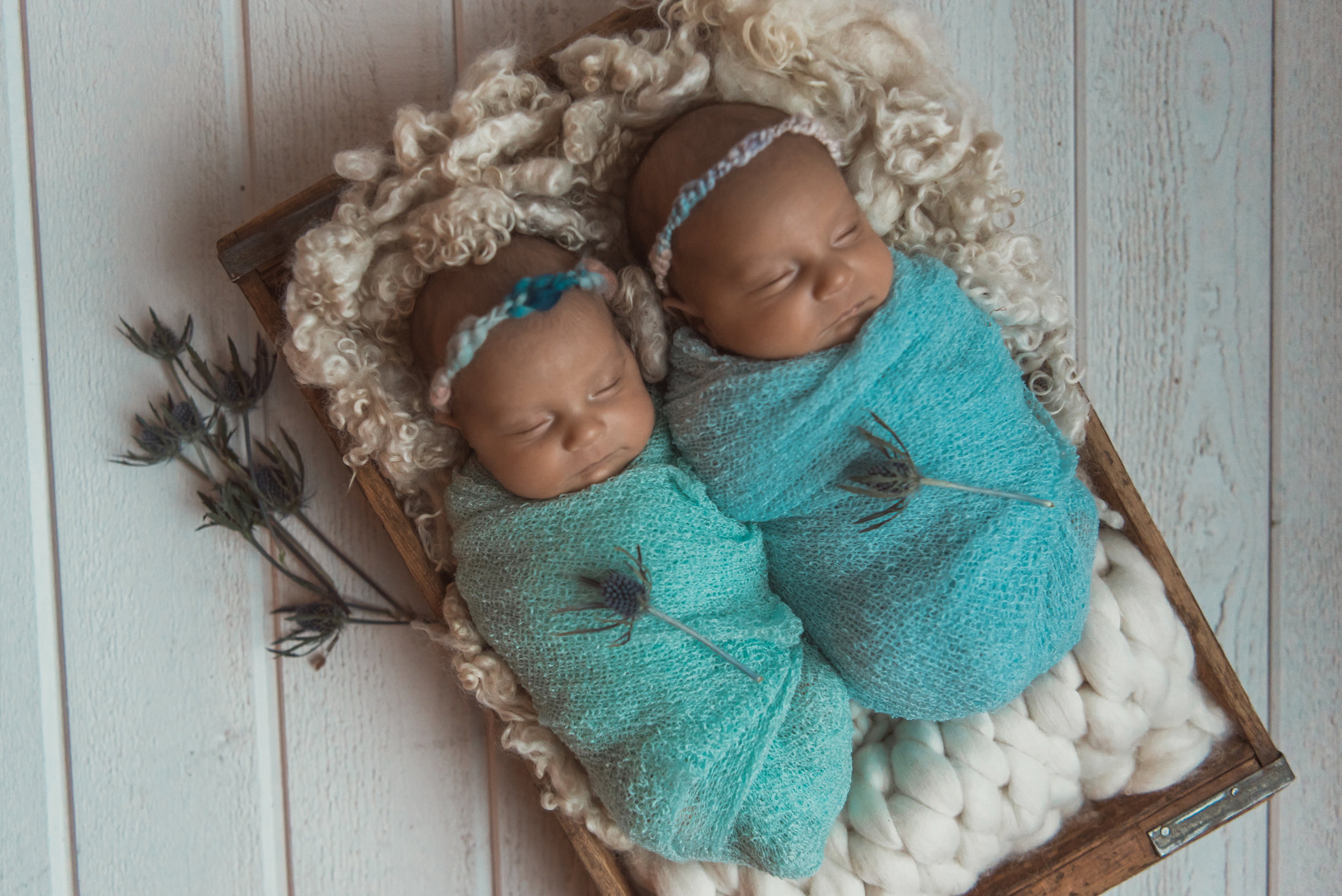 Laura Olson Photography - Nievelina - Newborns - Nova and Luna - December 2016-1695-2.jpg