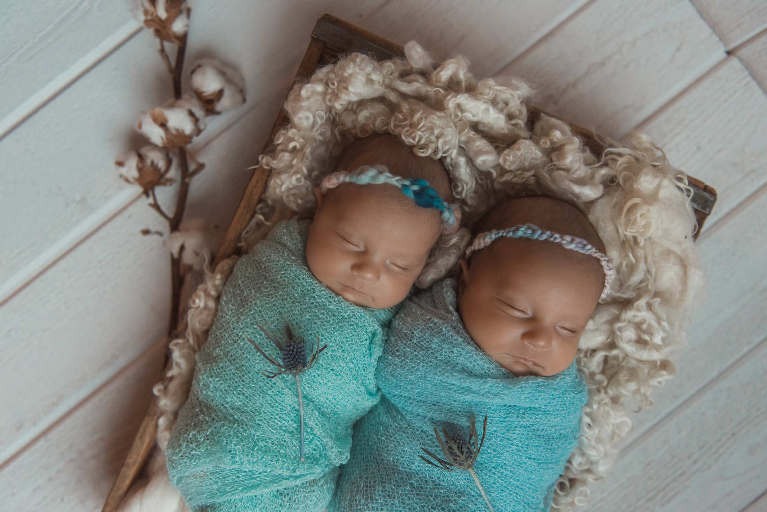 Laura Olson Photography - Nievelina - Newborns - Nova and Luna - December 2016-1693-2.jpg