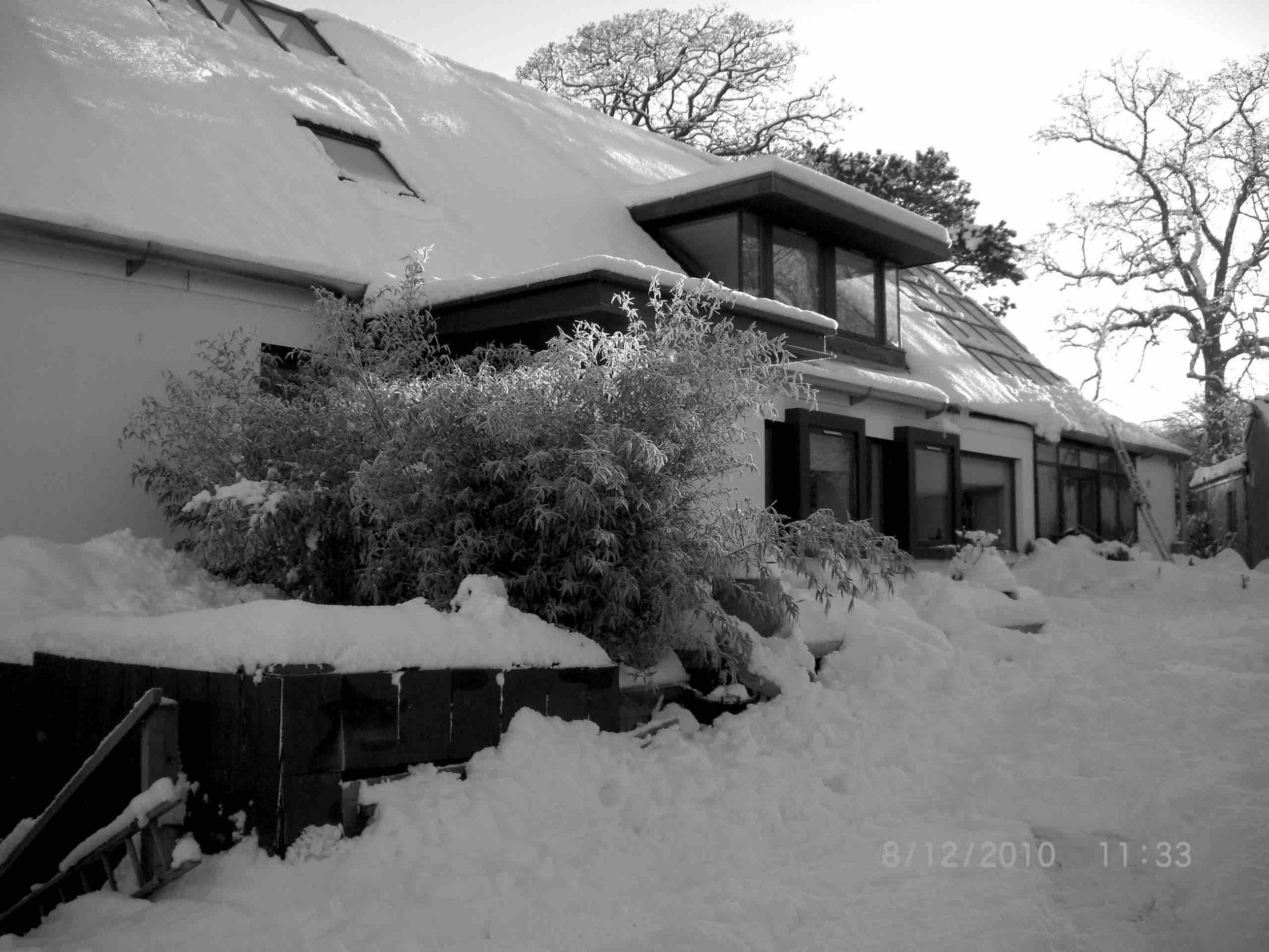 snow 2010 053 copy.jpg