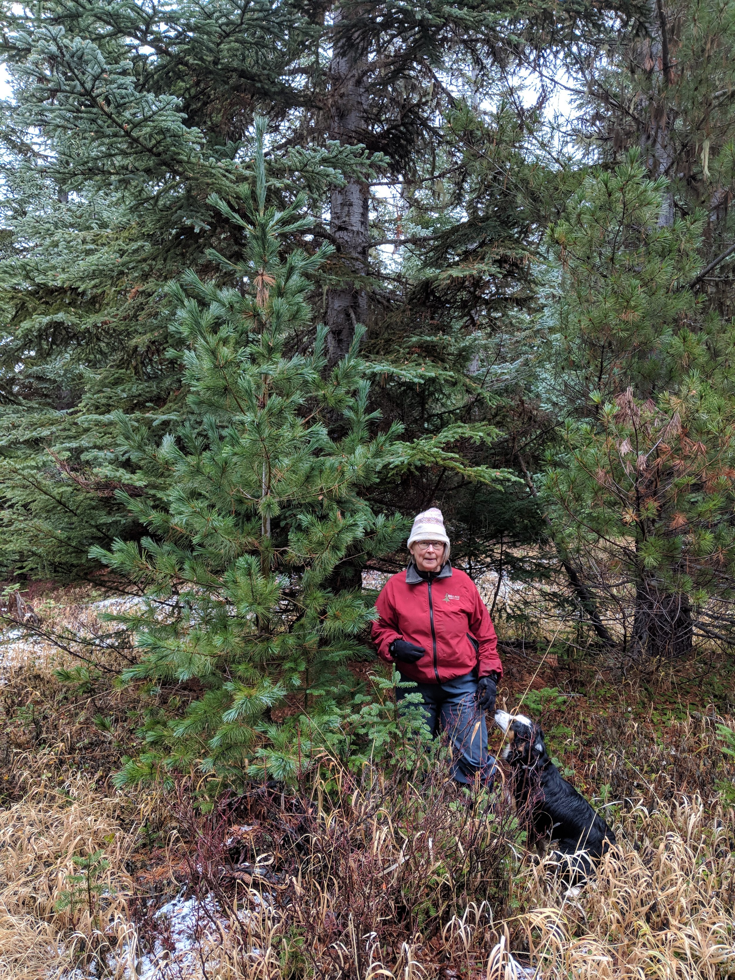 John's wife, Karin and the her dog Poppy, and of course, the tree.