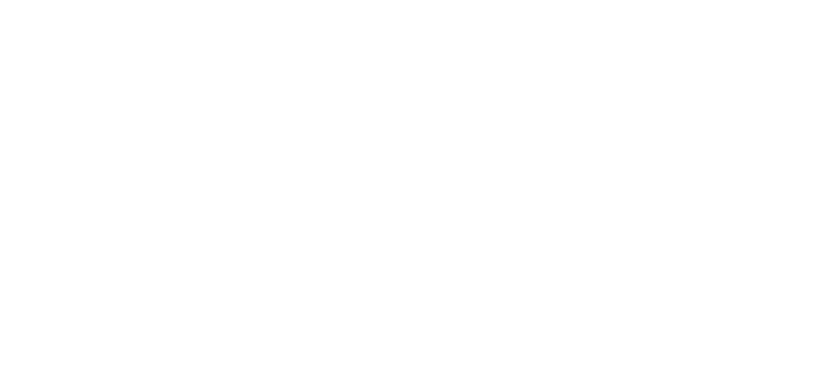 New Logo, White.png