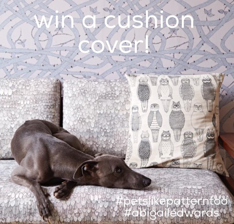 win-a-cushion-cover