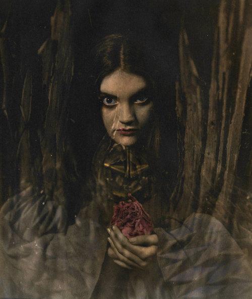 Onirique | Ellen Rogers