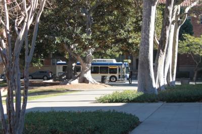 A+CollegeConsultants-Bruin-Bus