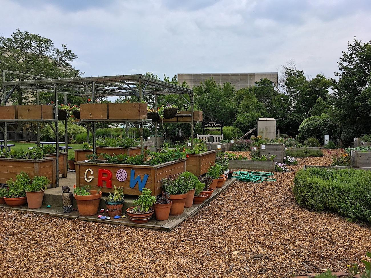 rooftp garden.JPG