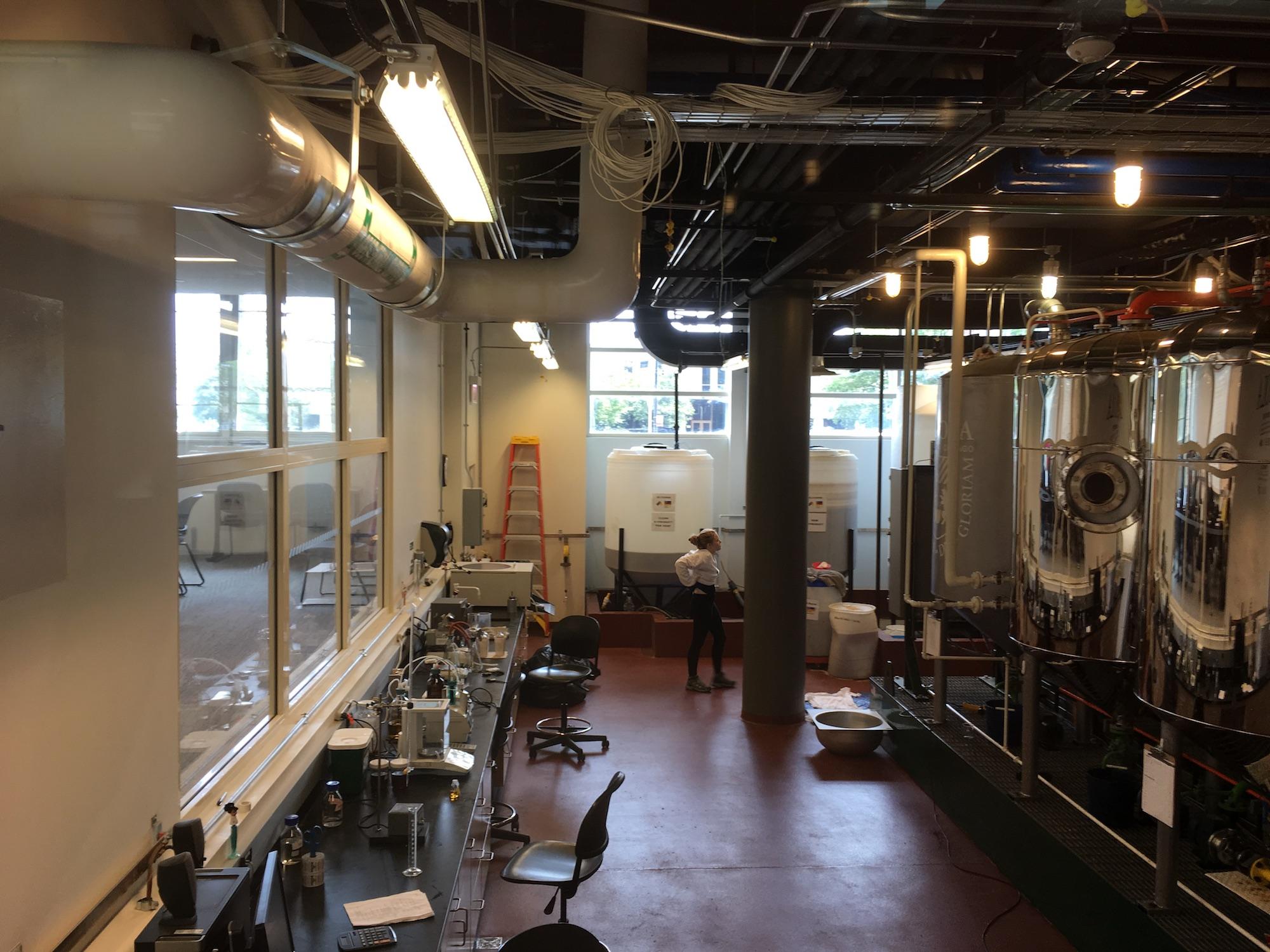 biodiesel lab.JPG