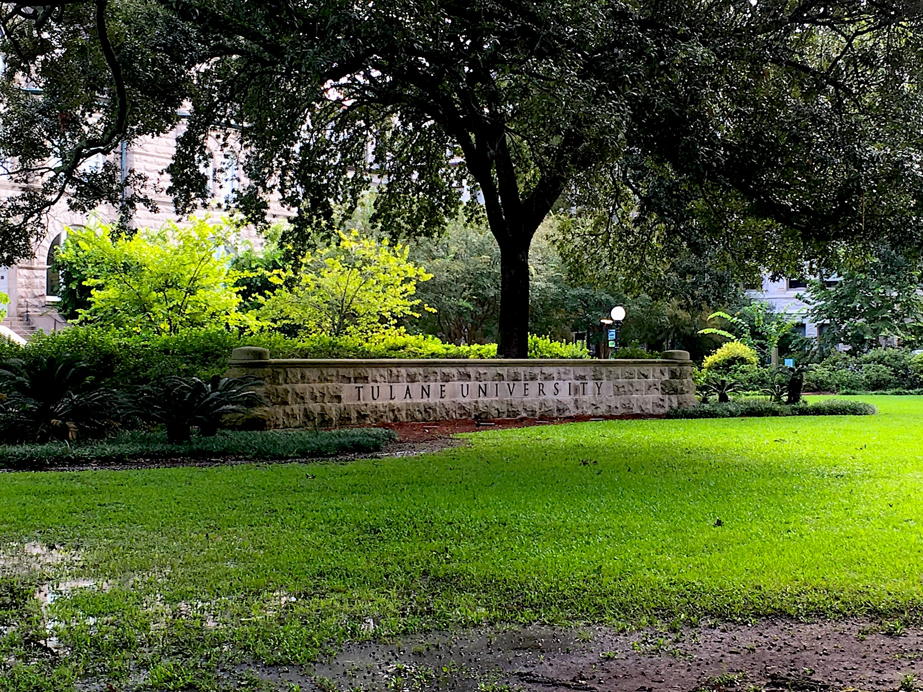 Tulane-Monument.jpg