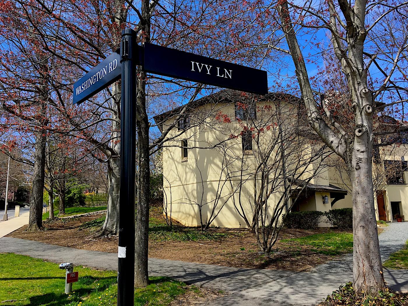 Princeton-Ivy-Lane.jpg