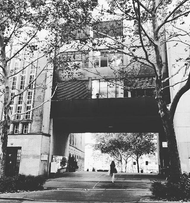 Unsere Stadttouren haben keine Öffnungszeiten. Zu jeder Tages- und Jahreszeit laden wir euch ein, Zürich und seine besonderen Geschichten von einer neuen Seite zu entdecken! #buxzh #stadtspaziergänge #immersiv #stadtkultur #literaturtour #zurich #ar