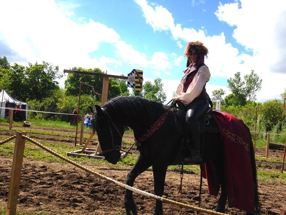 SW Horse2.jpg