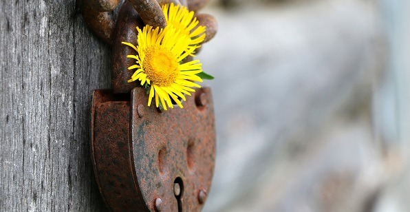 confidentiality and GDPR compliance at bright yellow coaching
