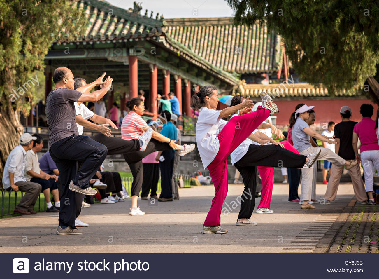 NEXT: MANDATORY TAI CHI CLASSES FOR EVERYONE