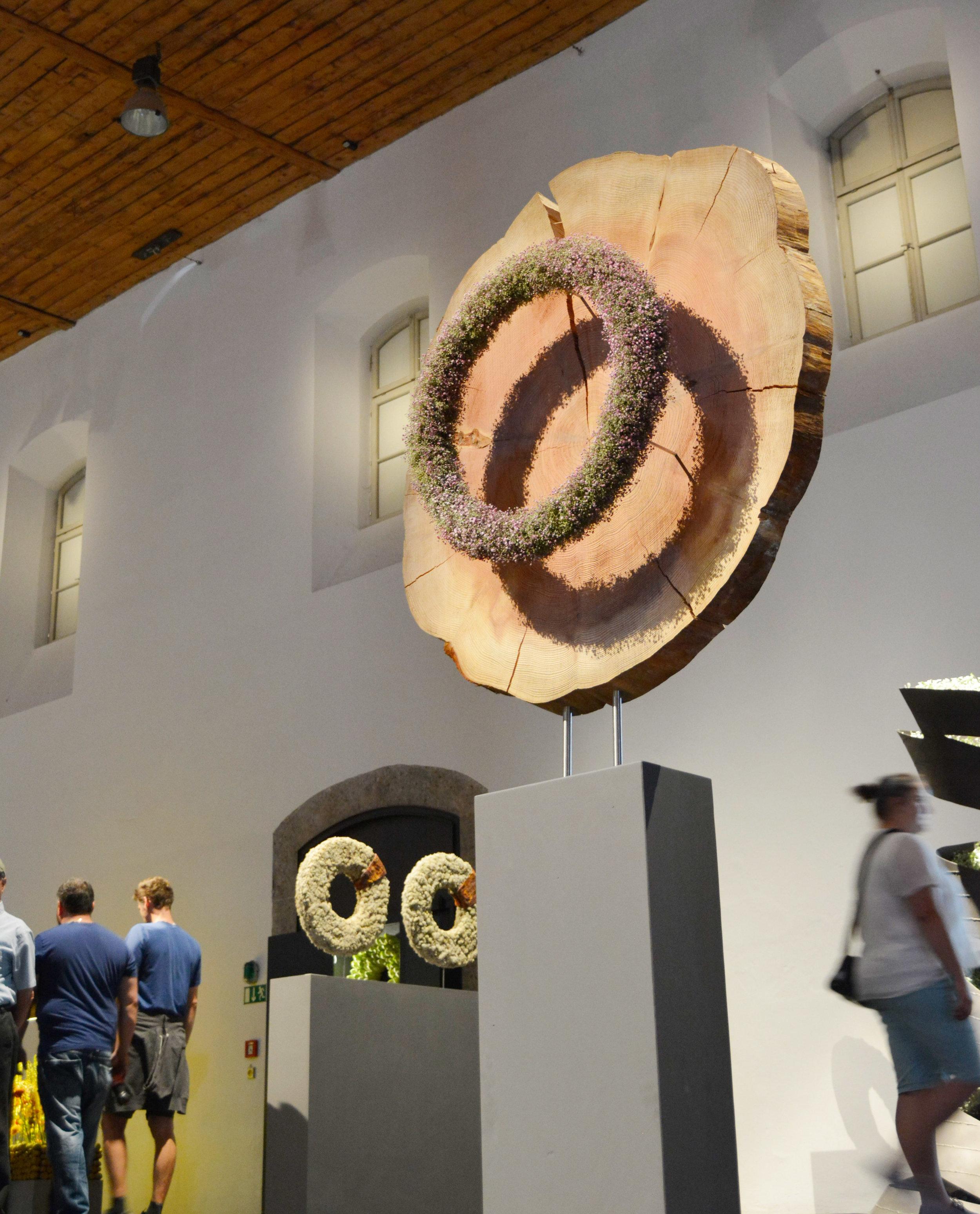 Franziska Krebser Wil/CH thematisierte mit einer imposanten Holzscheibe und deren Jahrringen das Thema des Wachsens, des Lebens und durch die Baumscheibe indirekt das Thema der Vergänglichkeit. Durch die objekthafte Darstellung entzog sich diese Arbeit den klassischen Betrachtungsweisen.