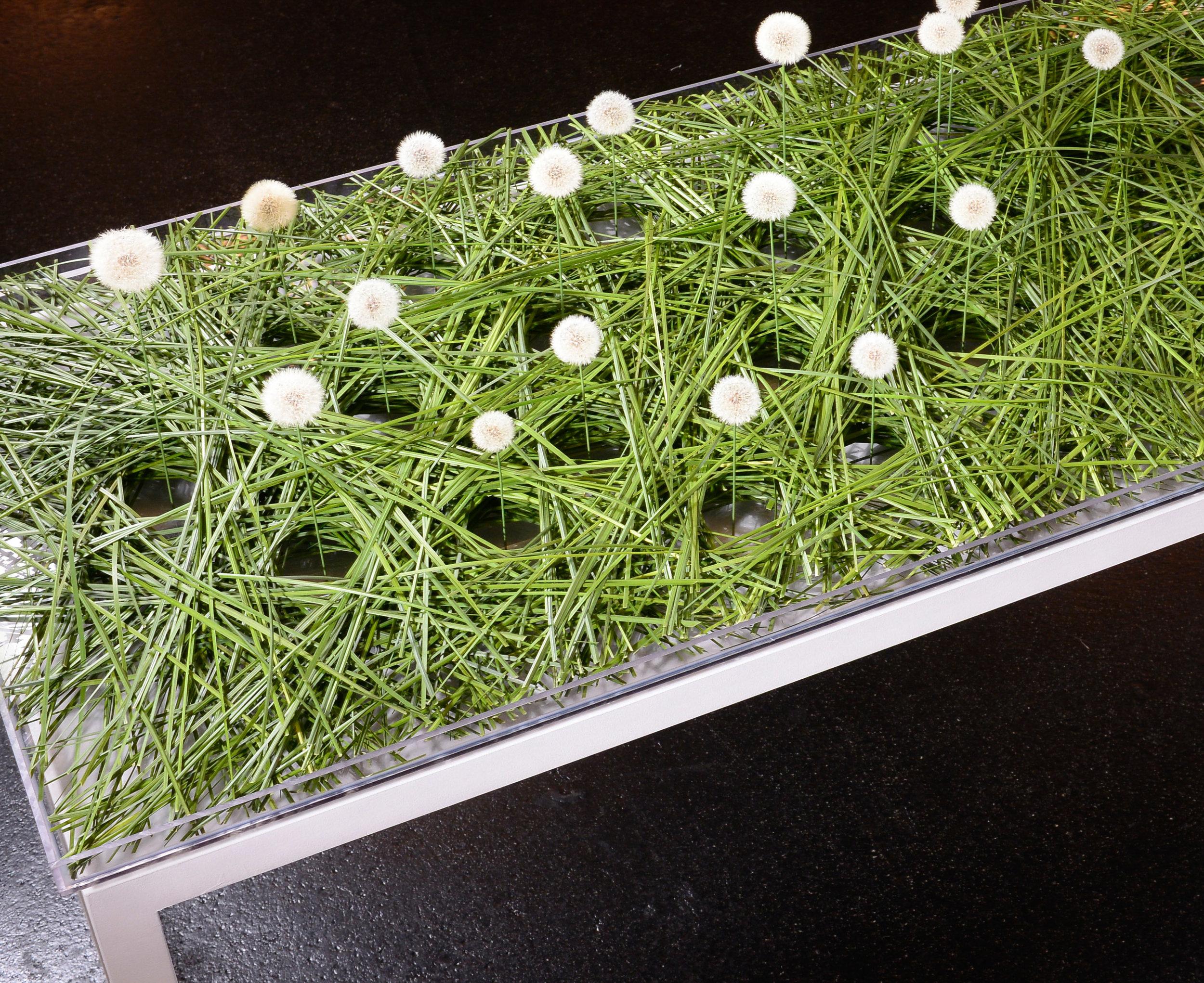 Eine Vielzahl von Steelgräsern formierte Sabrina Schober aus Süddeutschland so an, dass sich in genau bestimmten Abständen kreisrunde Öffnungen ergaben. Diese beherbergten dann je eine Kostbarkeit.