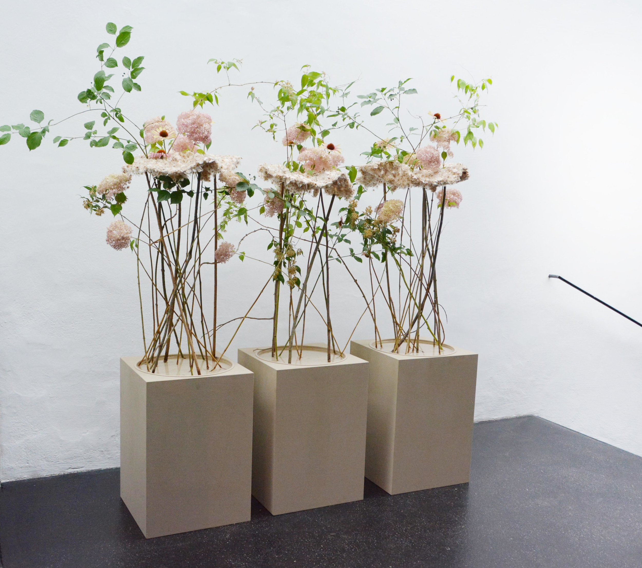 Valérie Jucker schuf eine Strauss-Triologie, ein meisterlich gelöstes Wechselspiel zwischen markanten Floralien und wohltuendem Freiraum.
