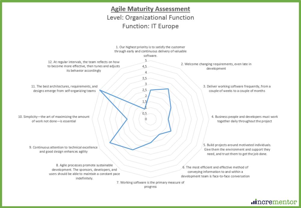 Agile Maturity Assessment Framework Organizational Function Level.png