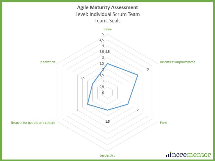 Agile Maturity Assessment+Framework Team level.png