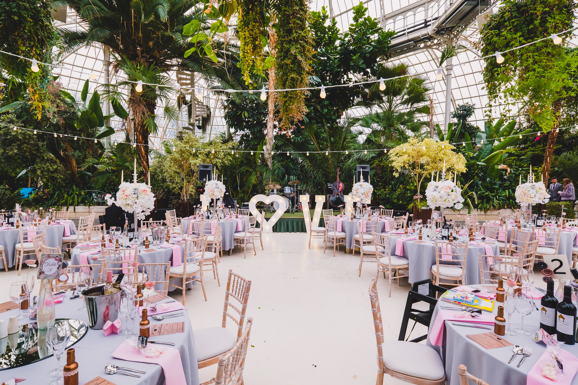 Dusty pink and grey against the beautiful greens of The Palm House, Sefton Park