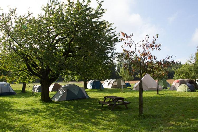 Acc_Camping.jpg