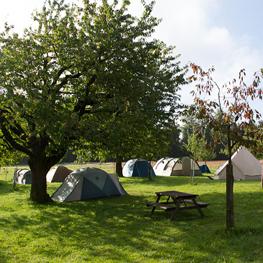 Acc_Camping_263x263.jpg