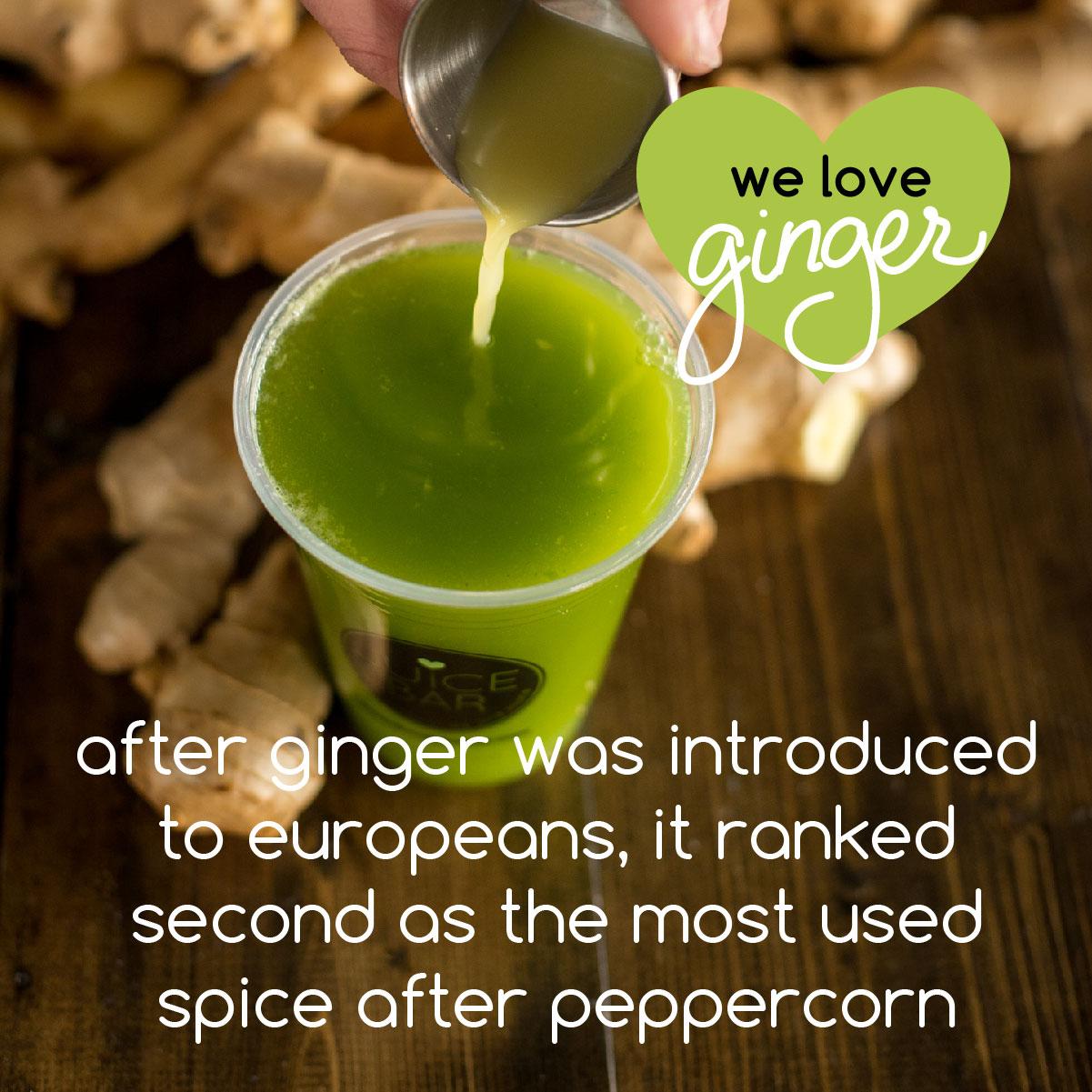 ginger fun facts-08.jpg