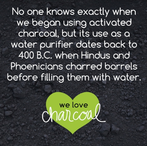 charcoal fun facts-07.jpg