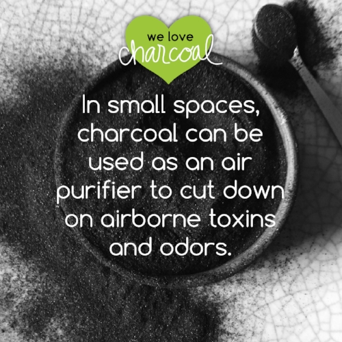 charcoal fun facts-03.jpg