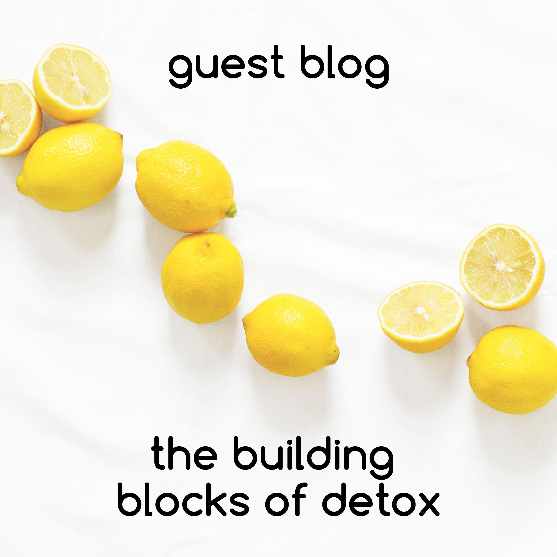 guest blog-02.jpg