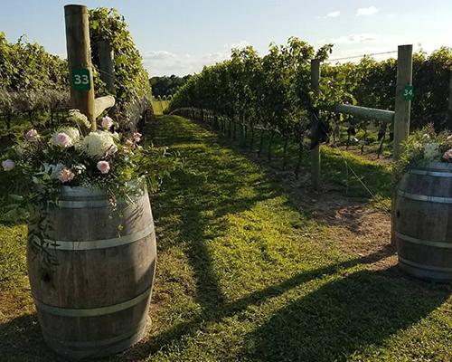 Chateau-WineProcess-9.jpg