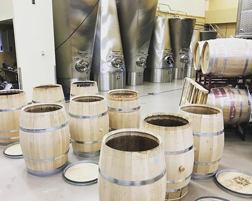 Chateau-WineProcess-10.jpg