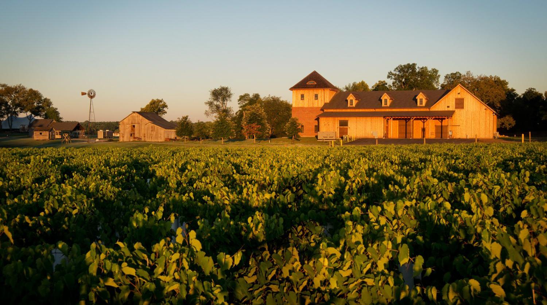 Chateau Bu-De Winery & Vineyard, Bohemia Manor Farm™