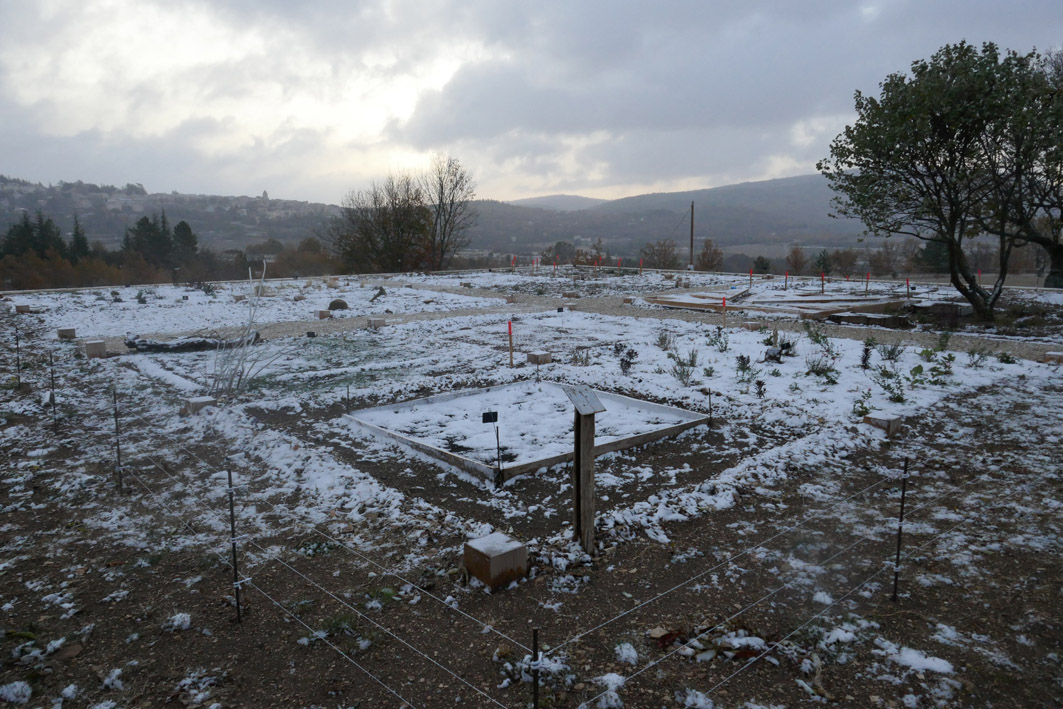 neige 1.jpg