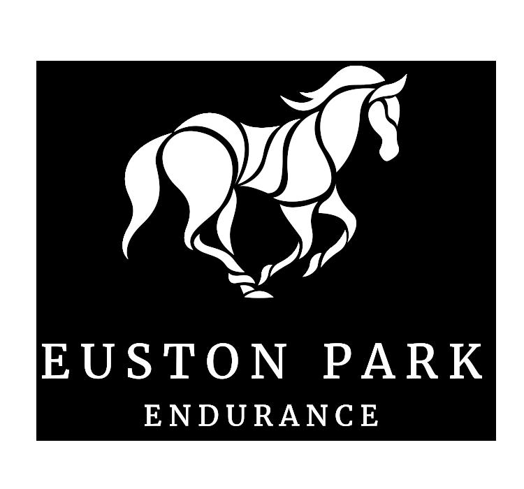 endurance2.png