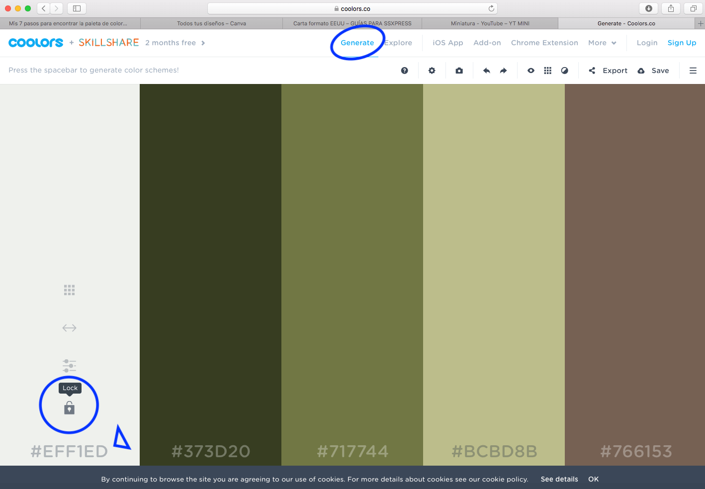 coolors para encontrar la paleta de colores de tu marca personal.png