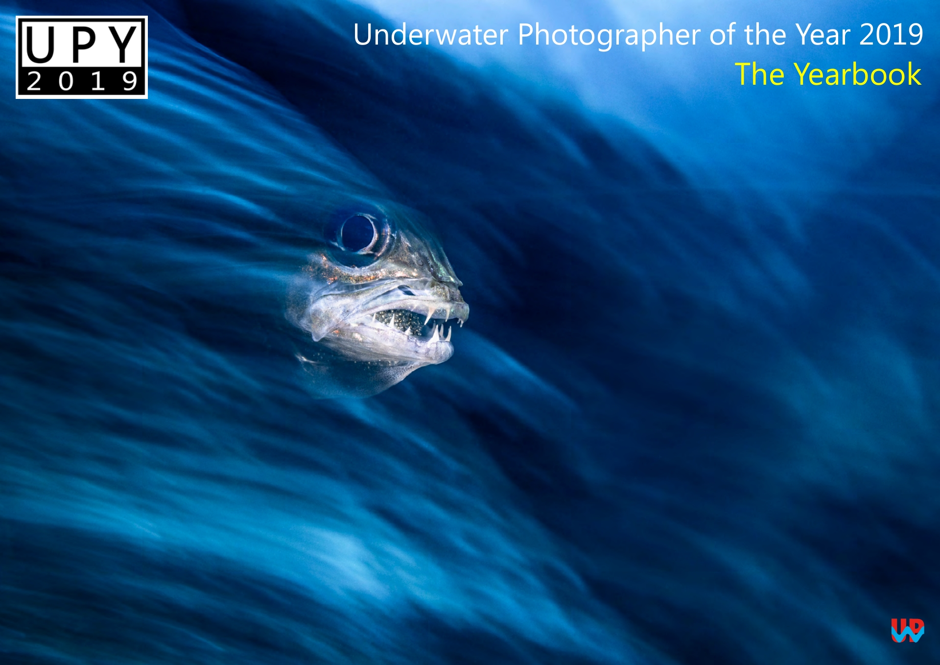 Front Cover Underwater Photographer of the Year - Yearbook 2019