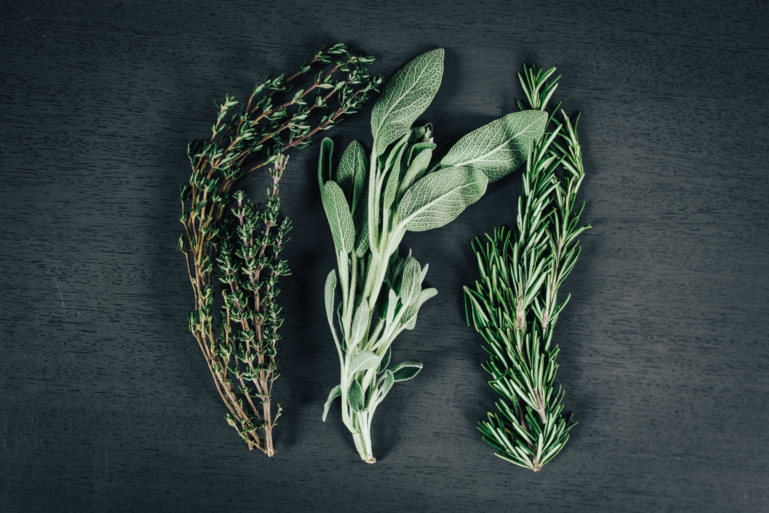 Rosemary Thyme and Sage Herbs