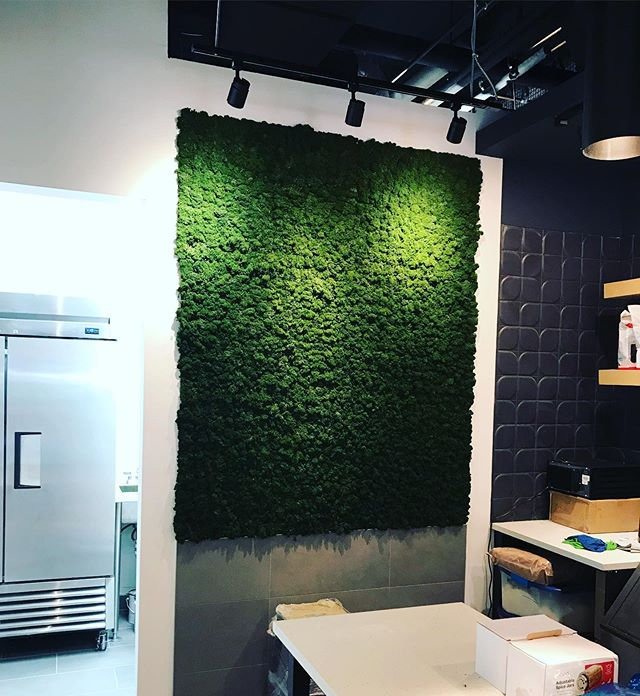 We just installed our first wood wall supplied by Eco Floor Store. This is in a new shop in Vancouver called Shift Shakes. #mosswall #designtrend #shiftshakes #freshidea
