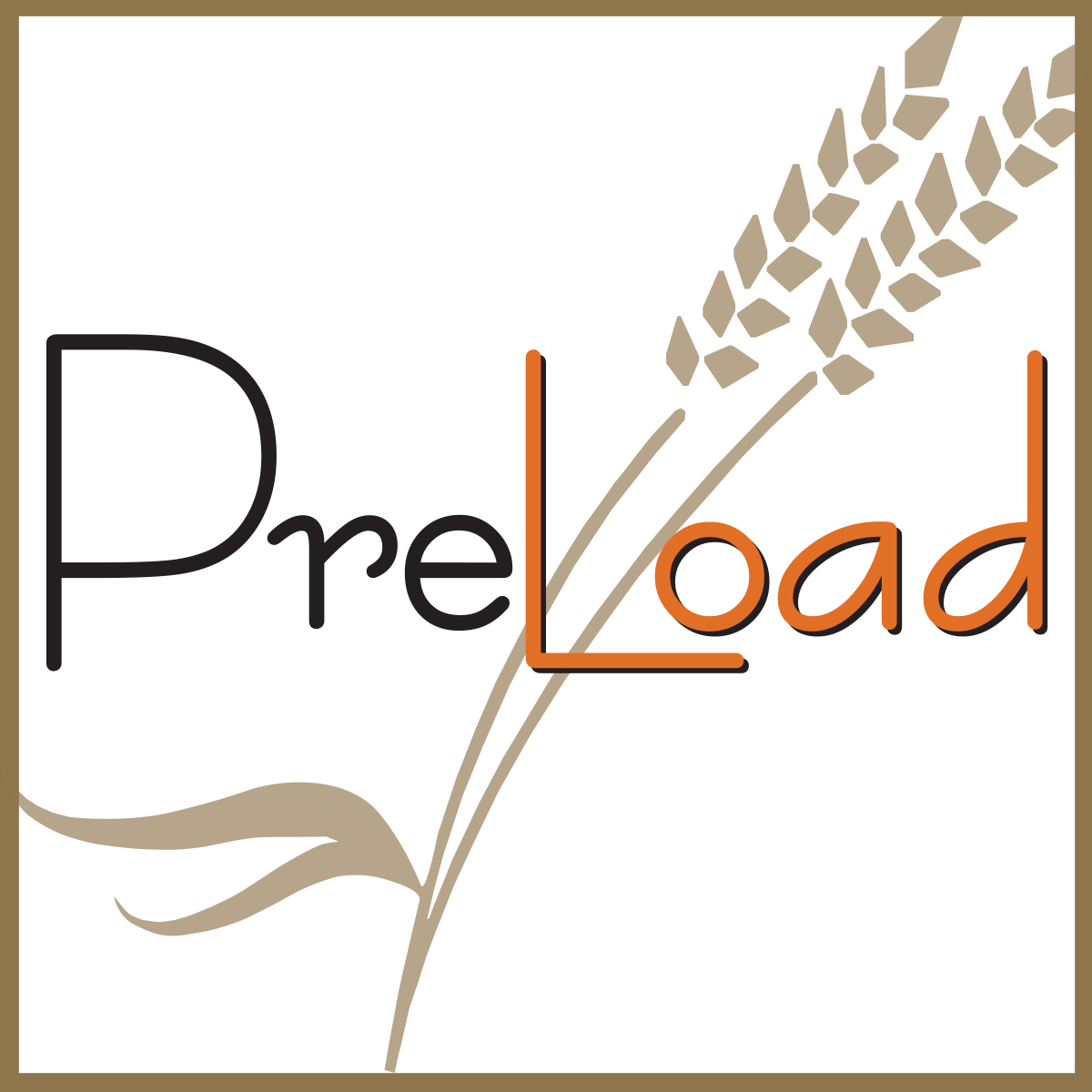 PreLoad carousel .png