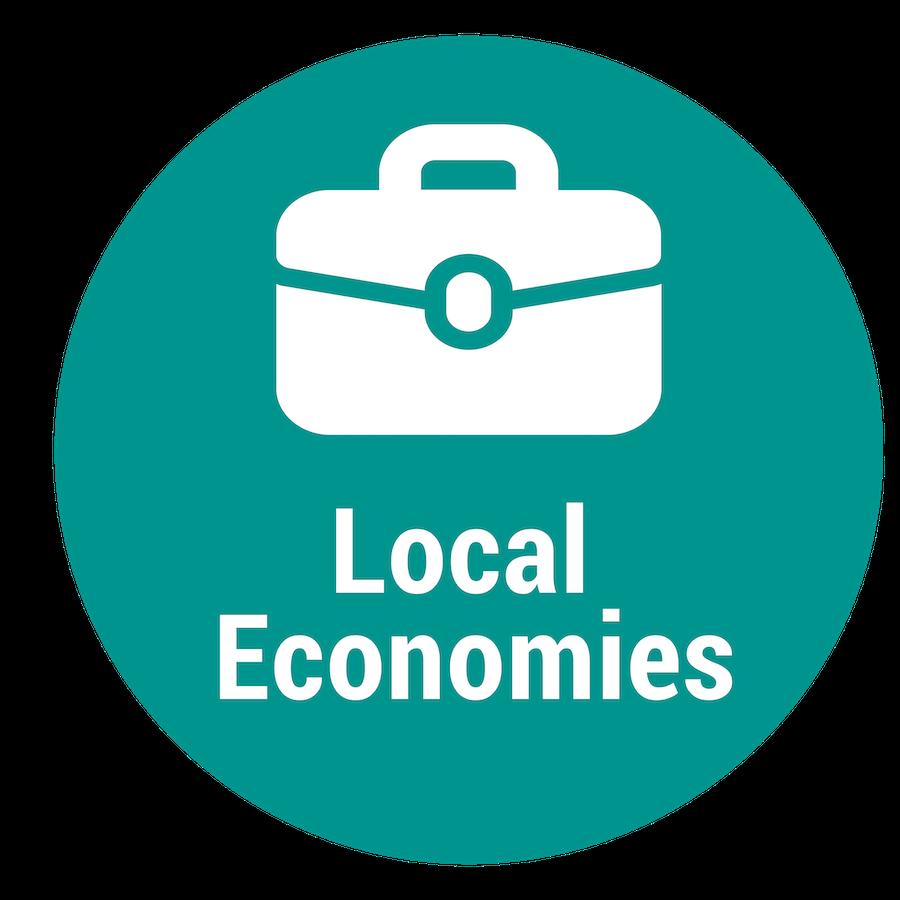 programicon__localeconomies.png