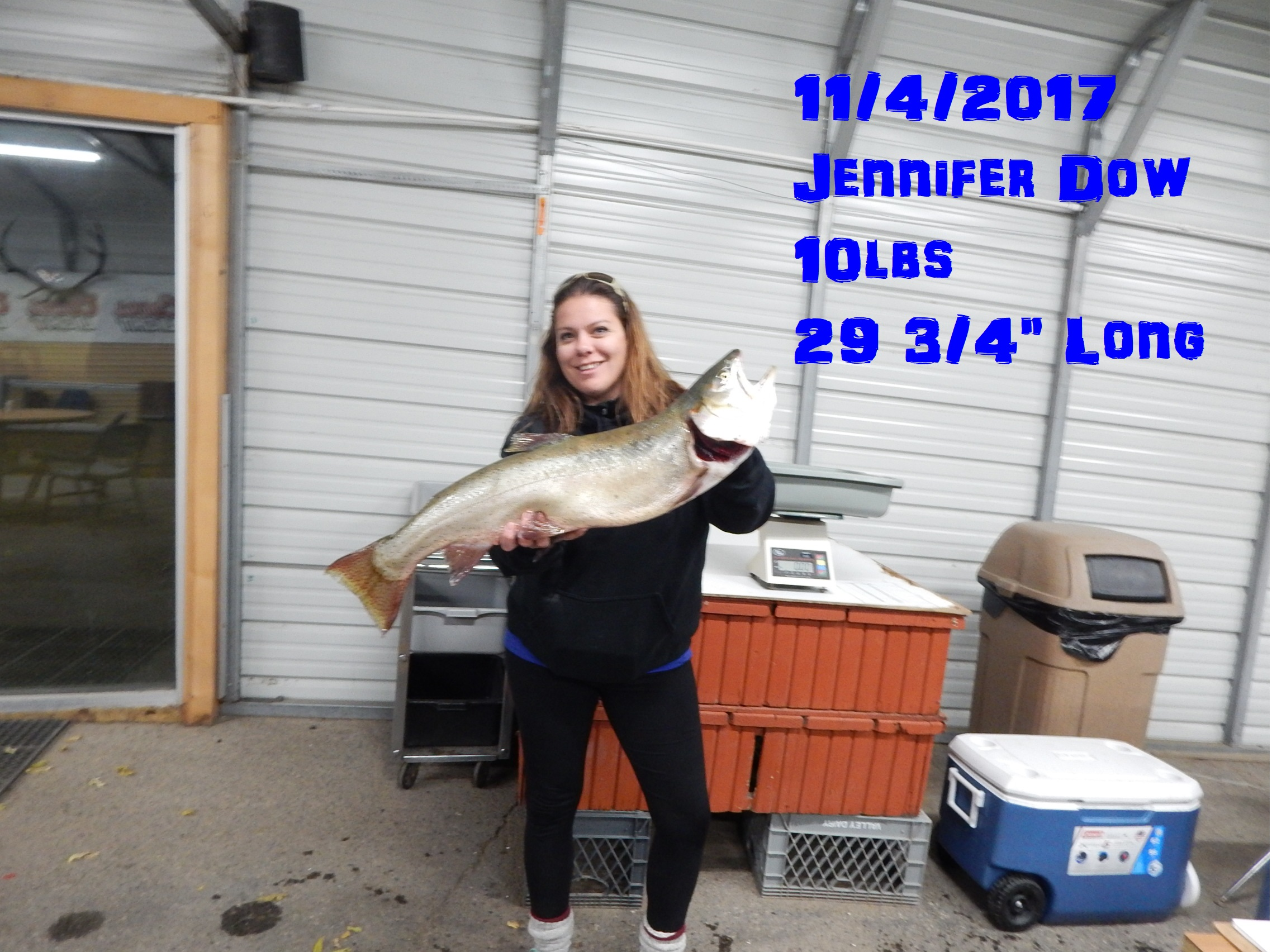 Jennifer Dow 11-4-17.jpg
